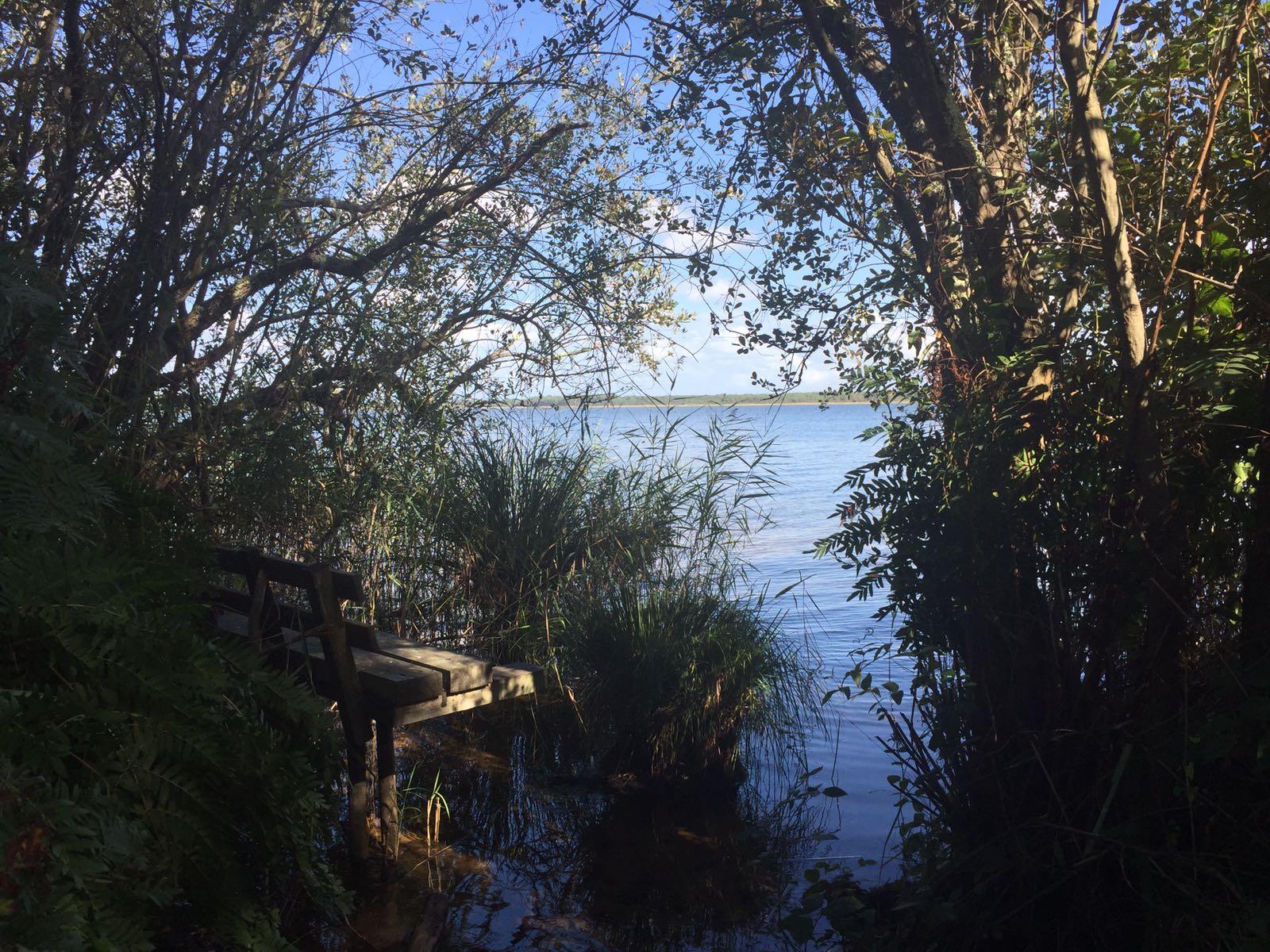 Un banc au bord du lac