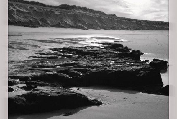 blog littéraire homme archipel