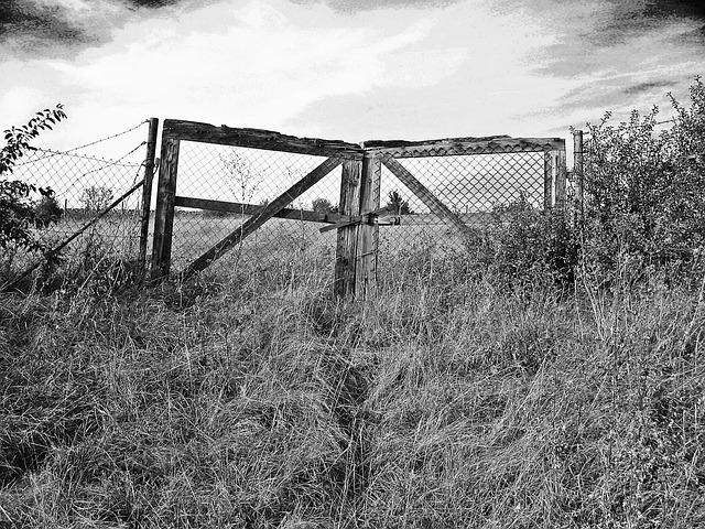 Gate D01
